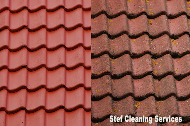 Stef Cleaning Services Etten Leur (img nr 2)